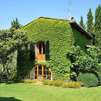 Manutenzione aree verdi Turbo Clean Expert SRL Firenze